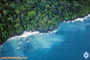 Vacaciones en la Isla de Gorgona