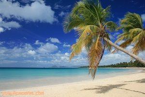 Vacaciones en las Antillas Francesas