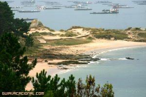 Las rías Baixas y su sabor marinero