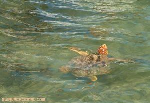 Visita a Sian Ka an en la Riviera Maya