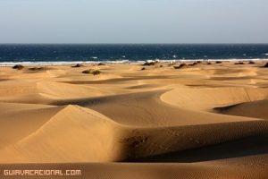 Un gran viaje por el sur de Gran Canaria